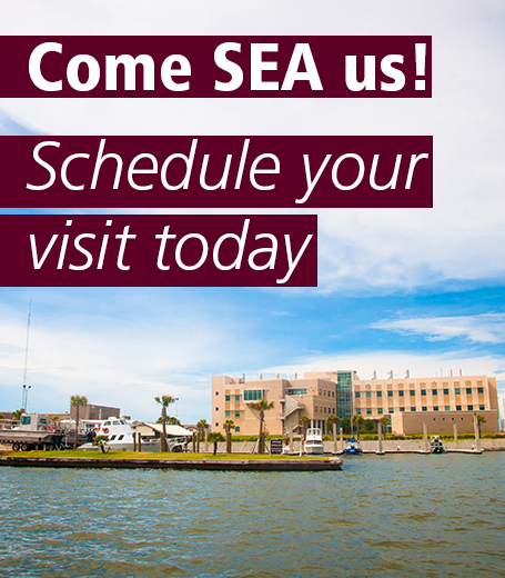 Schedule your visit today!