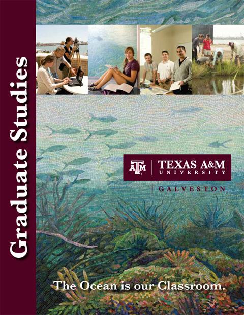 Marine Biology Masters Programs | Marine World